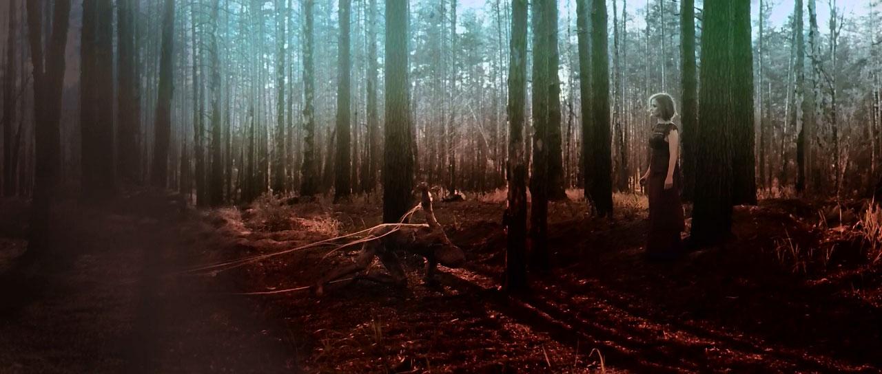 порно хижина в лесу