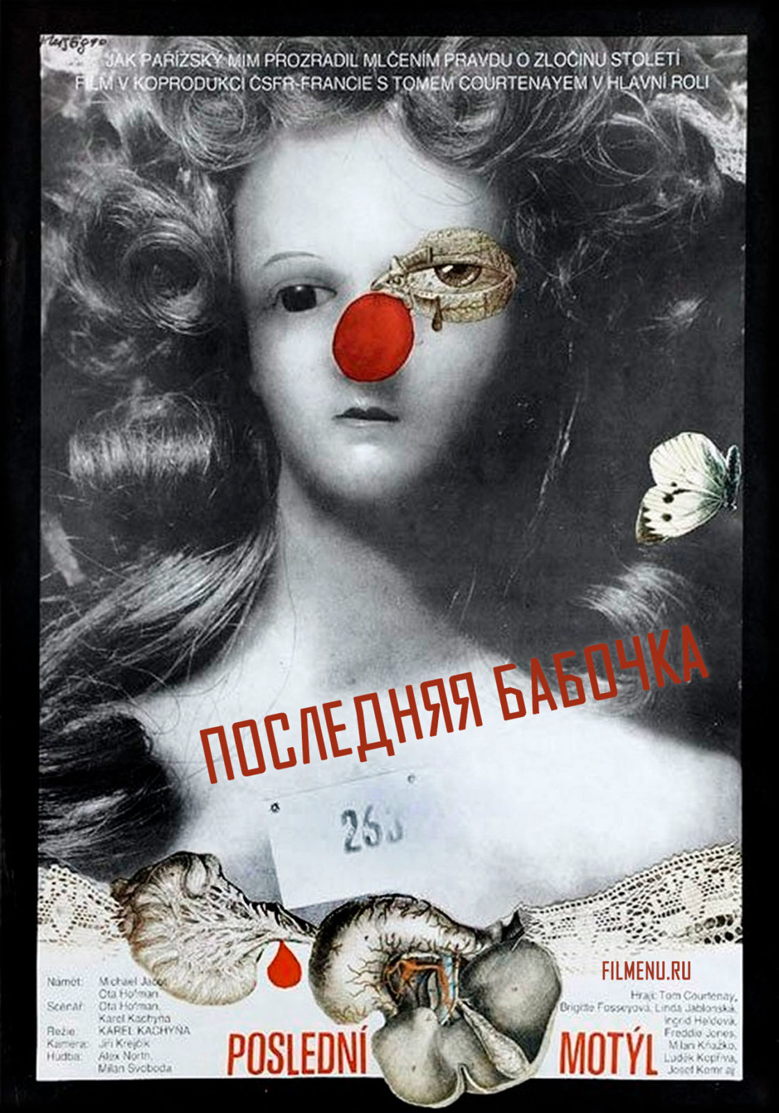 Последняя бабочка - постер