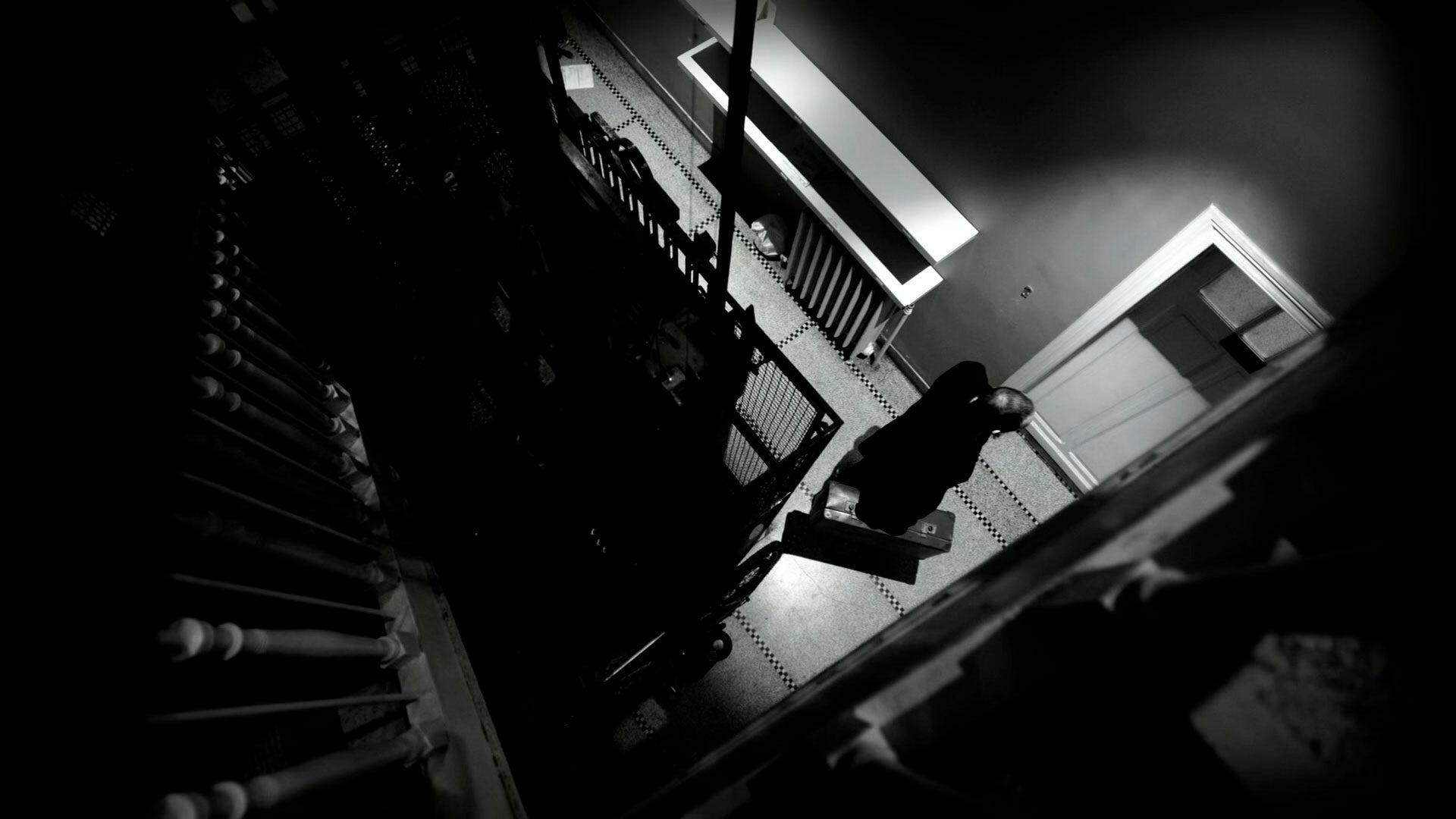 Аксолотль / Axolotl (2018 Оливье Смолдерс)